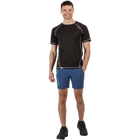 Regatta Mountain Shorts Hombre, dark denim